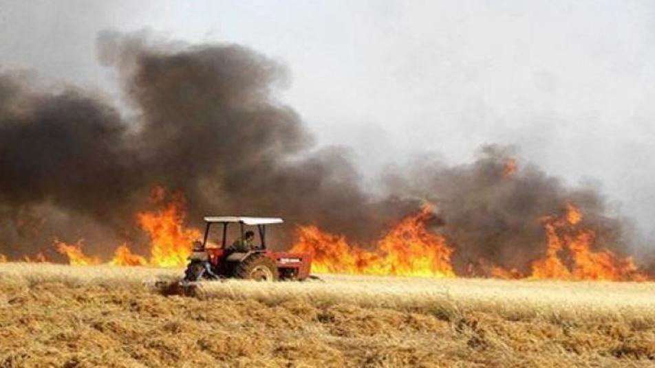 داعش تحرق المحاصيل الزراعية في سوريا والعراق