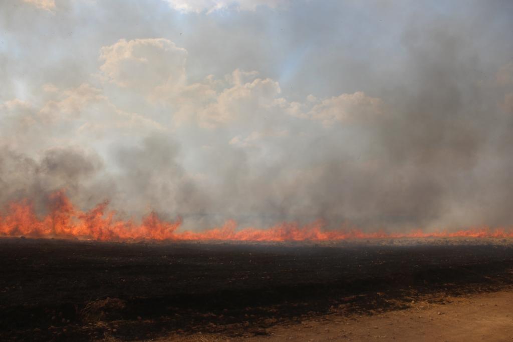 حرائق جديدة بأراضي الدرباسية وفرق الإطفاء تخمدها