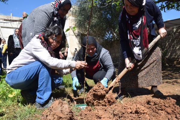 زراعة الأشجار في مزار الشهداء المدنيين والحدائق العامة احتفاءً بميلاد القائد