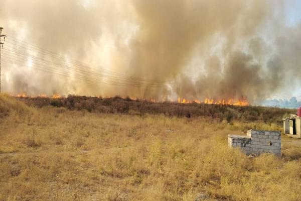 إخماد النيران شمالي قامشلو بعد أن التهمت 100 دونم من الشعير- تم التحديث