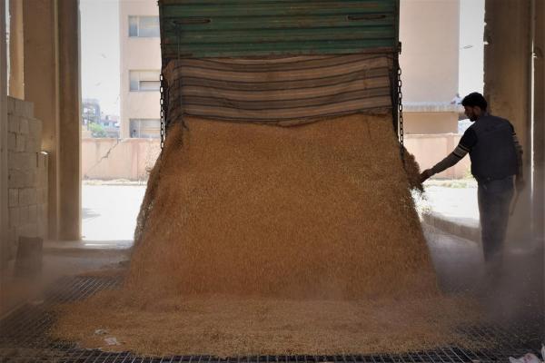 30 ورشة للعمّال توزّع على مراكز صوامع الحبوب في الحسكة