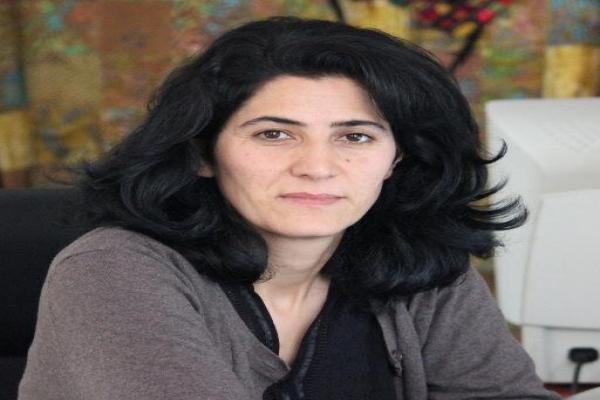 نيلوفر كوج: الكرد دخلوا مرحلة بات بإمكانهم فيها بناء كيانهم- مصحح