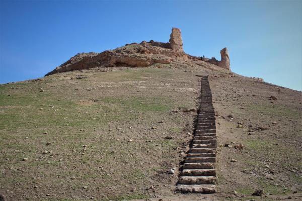 مديرية الآثار: على البعثات الأثرية أن تقف أمام مسؤوليتها لحماية تاريخ الإنسانية جمعاء