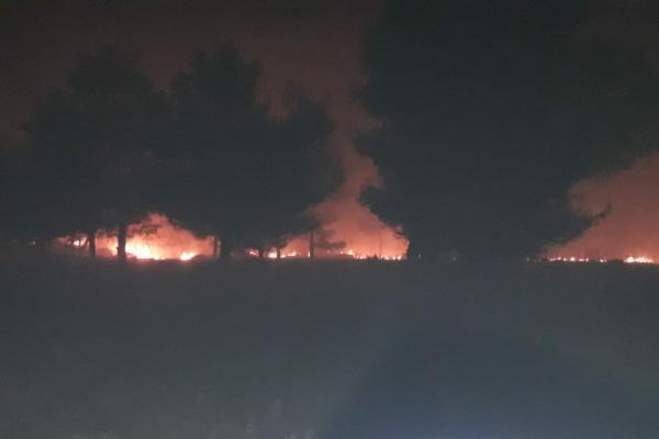 جيش الاحتلال يضرم النيران في أراضي قرى شيراوا بعفرين
