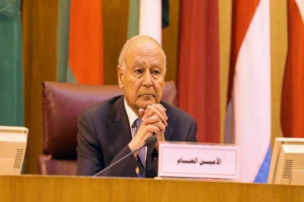 أبو الغيط: تركيّا وإيران أظهرتا رغبة في الانقضاض على المنطقة العربيّة