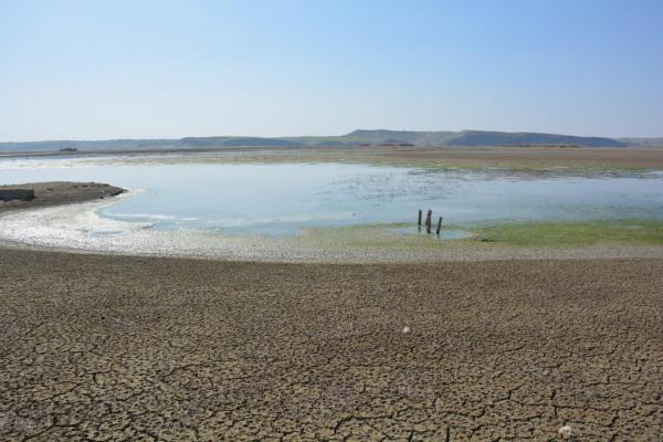 بالصور والفيديو.. كارثة بيئية ذات أضرار بشرية جسيمة لحقت بمجرى نهر الفرات