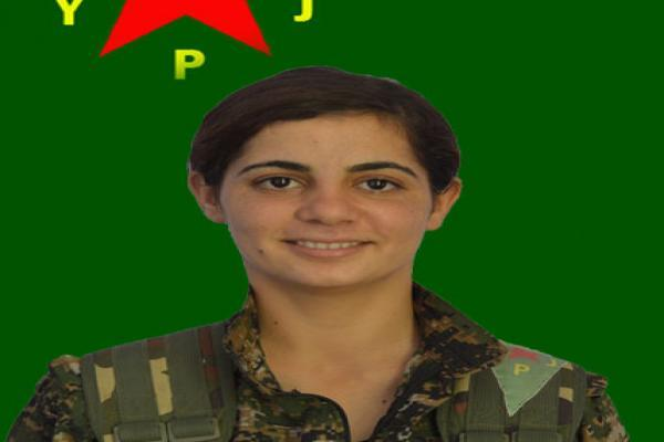 YPJ disclosed 1 martyrs' record