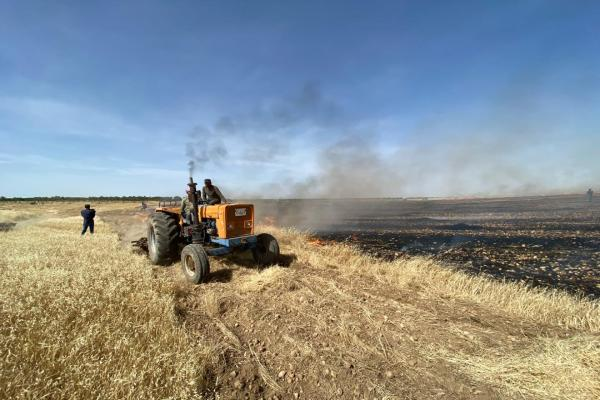Fires devour 15 hectares of wheat in Kobane, a firefighter injured
