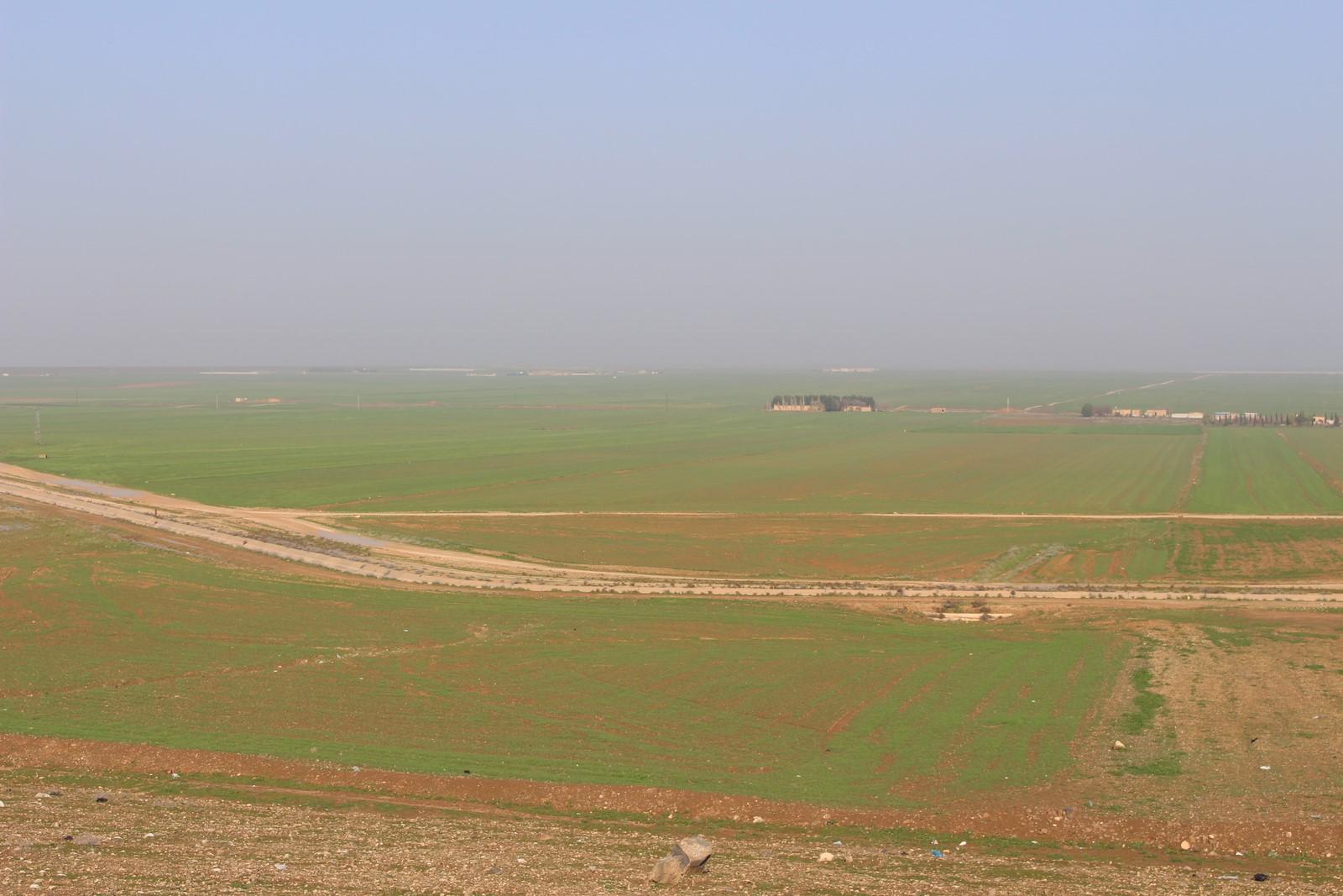Zirus es una amenaza para la temporada agrícola en el cantón de al-Hasakah