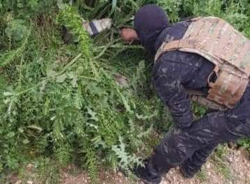 Mina desmantelada en Manbij sin ningún daño