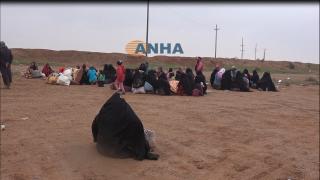 SDF: Cientos de civiles liberados en los ejes de Hajin