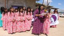 Kevana Zêrîn: Divê rêxistinên mafên mirovan sîtemkariya li dijî Kurdan rawestînin