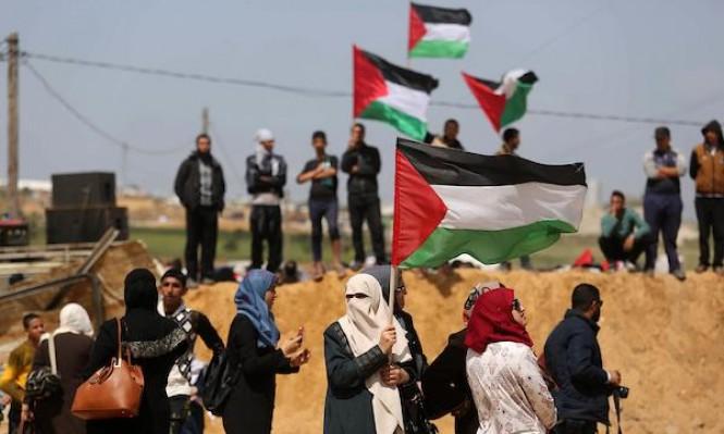 В Газе 11 палестинцев получили ранения