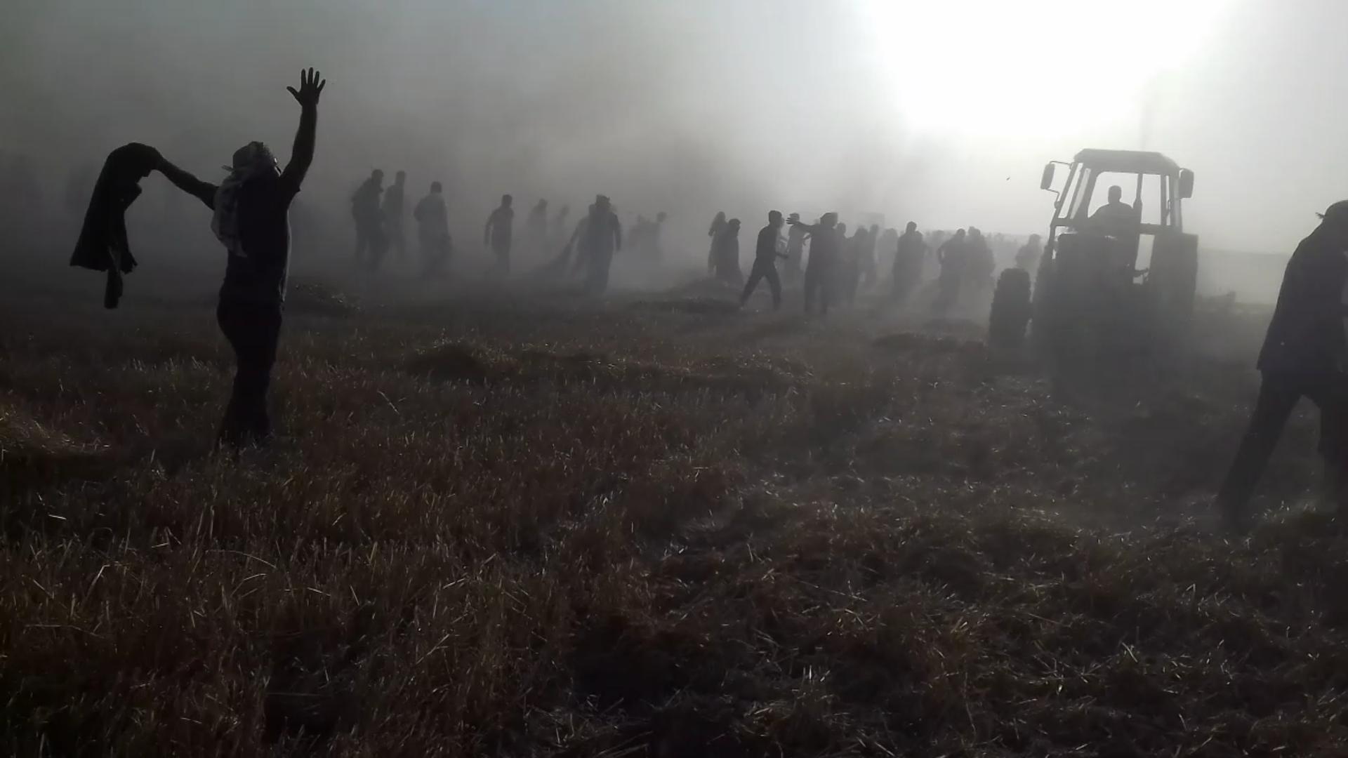 В Тель Хамисе огонь охватил ячменное поле