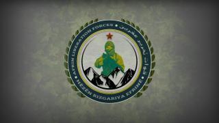 Efrîn Kurtuluş Güçleri: Efrin ve Mare'de 9 terörist öldürüldü