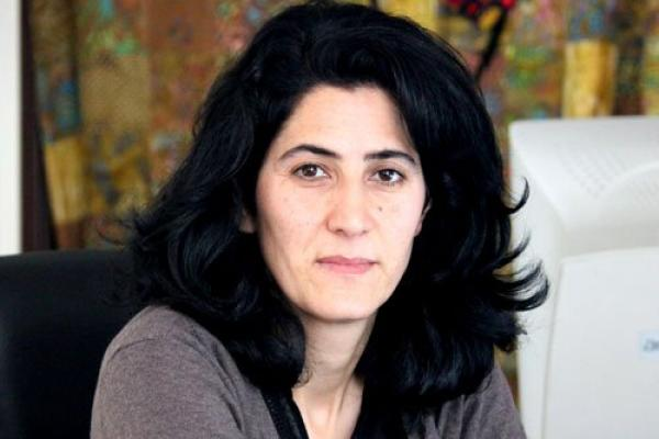Nilüfer Koç: Gerilla karşısında kaybeden Türk devleti KDP'yi kullanmak istiyor
